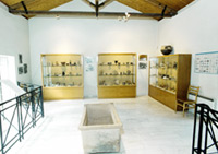 Interrion of the Archaeological Collection with vases showcases