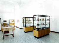Archaeological Collection's interior with showcases